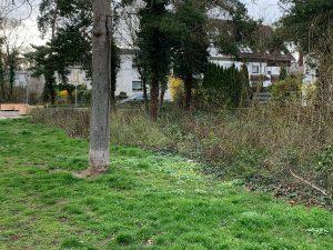 CDU will Grünstreifen im Lagerfeld beibehalten